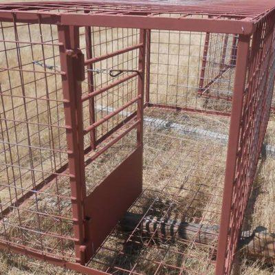 Hog Trap