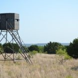Insulated Deer Blind in Pasture MB Ranch King