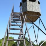 Insulated Deer Blind stairs MB Ranch King