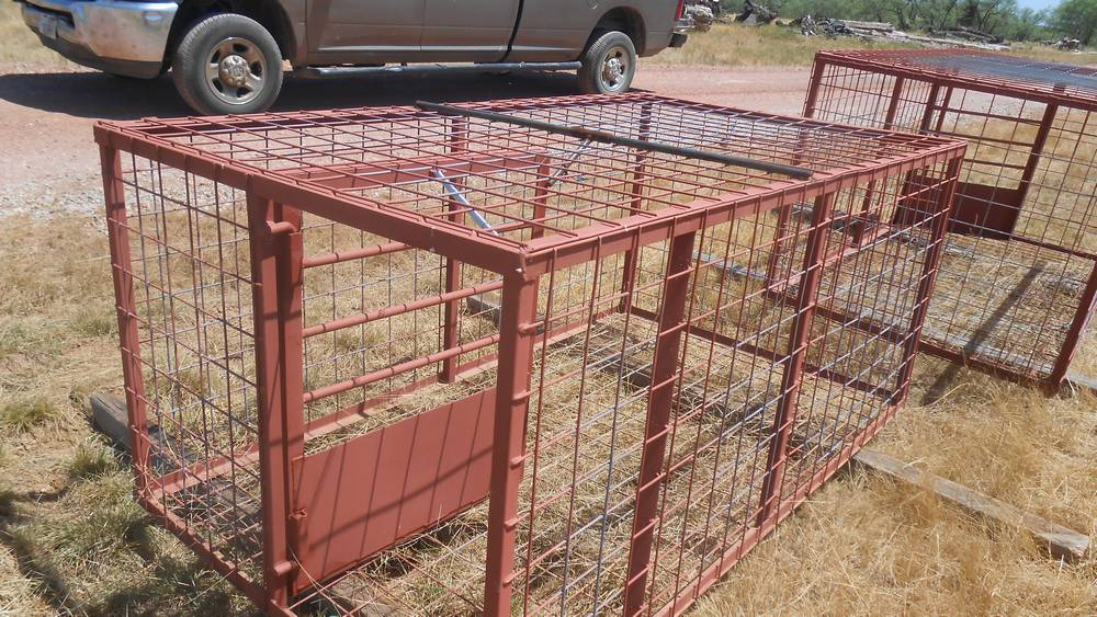 Hog Trap 4 X 42 Quot X 8 North Texas Deer Blinds